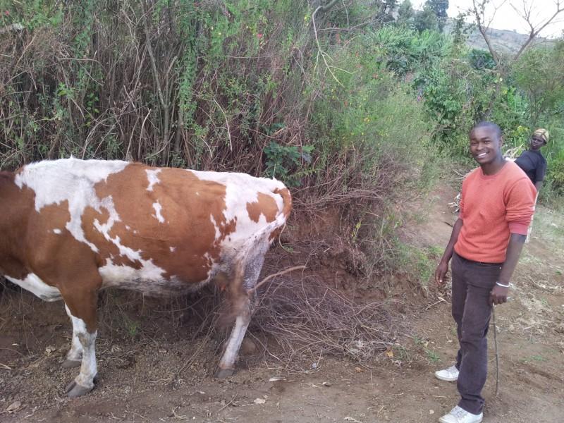 kenya-janfebr-2013-414